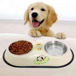 Чем лучше кормить щенков?