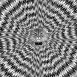 Как получить галлюцинации?