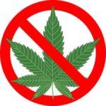 Тест на марихуану как обмануть?
