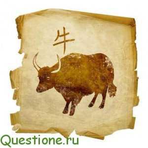 Какие года в год быка?