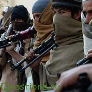 Как предупредить пропаганду молодежи в террористические организации?