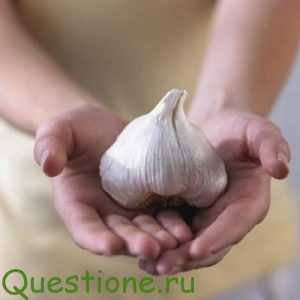 Чем полезен и вреден чеснок?