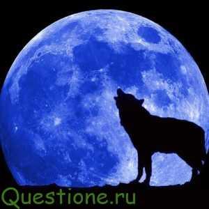 Мешает ли полная луна спать, делать операции и работе сердца?