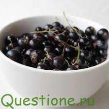 В чем польза черной смородины?