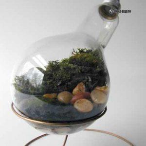 Как сделать террариум в лампочке?