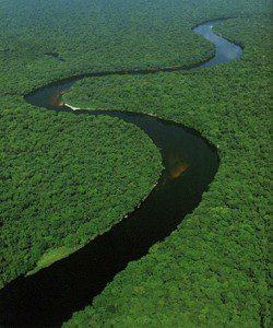 Какая река длиннее Волга или Амазонка?