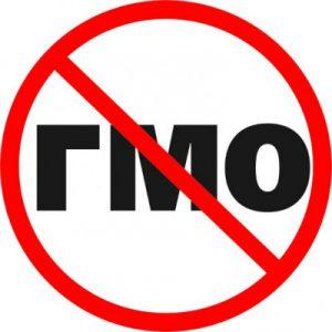 Вредно ли ГМО для здоровья?