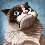 Как объяснить коту что он приемный?