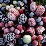 Заморозка фруктов, ягод, грибов и овощей и оптимальные способы выбора их в магазине?