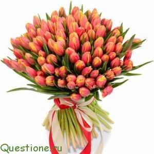 Букет тюльпанов: нужны ли какие-либо дополнения?